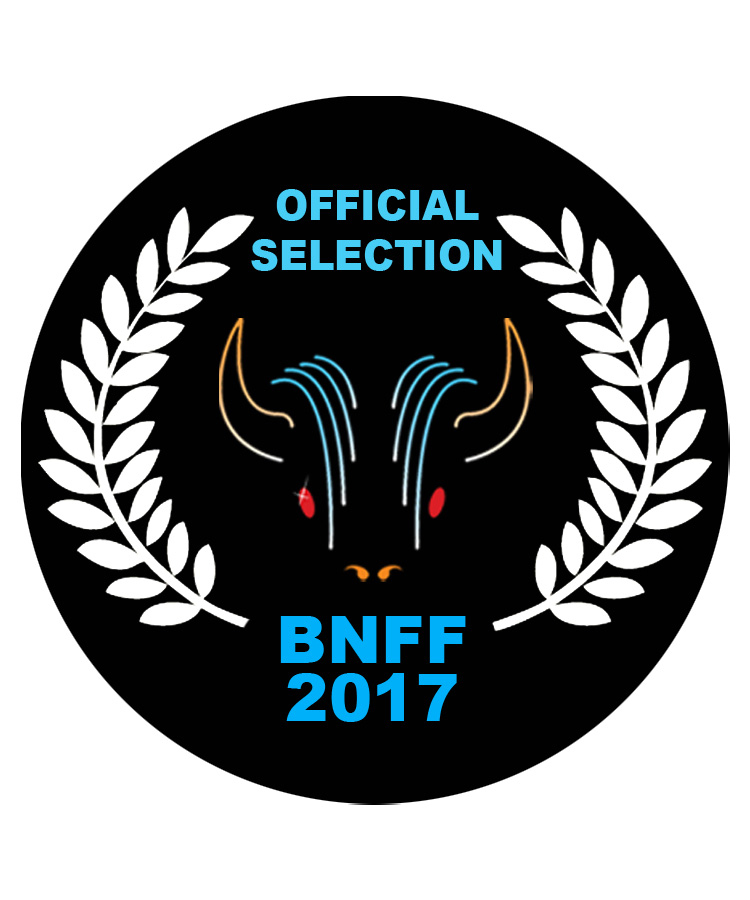 Buffalo-Niagara-official-selection-laurels-2017